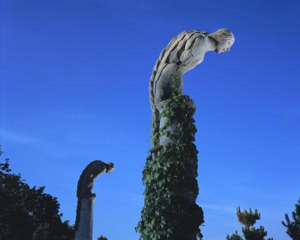 Detail of Pomerleau Park21